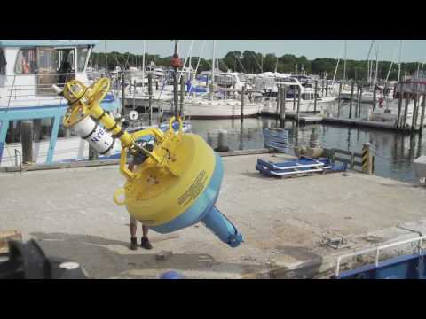 WCS-Woods Hole Acoustic Buoy Deployment in NY Bight | Blue York