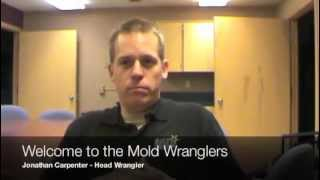 The Mold Wranglers | Montana Mold Remediation Professionals