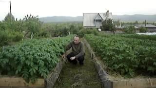 Игорь Лядов   как он достигает таких результатов