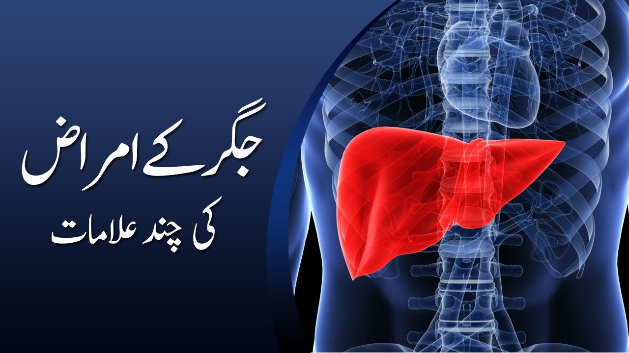 Liver Problems & Symptoms In Urdu/Hindi   Jigar ki bimari by Urdu Media