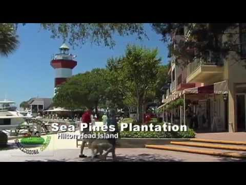 Sea Pines Plantation- What To Do In Sea Pines