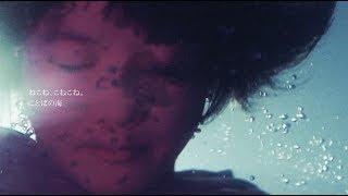 ねこね、こねこね。『ことばの海』Music Video