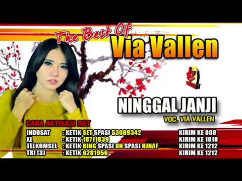 VIA VALLEN-NINGGAL JANJI-THE BEST OF VIA VALLEN