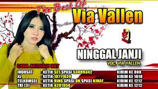 VIA VALLEN-NINGGAL JANJI-THE BEST OF VIA VALLEN