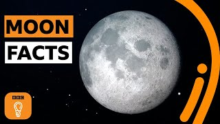 Why the moon is still such a mystery | BBC Ideas