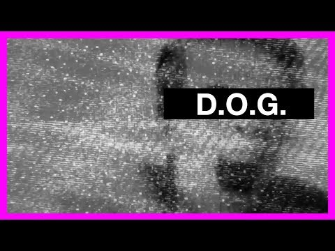 Patrick McCallion - D.O.G. (Official Video)