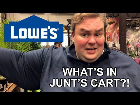 What's In Junt's Cart? – Lowes Home Improvement