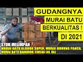 Ready Murai Medan Blorok Super Murai Bahorok Murai Gn Panca Cucak Ijo Dll Di Kios Suara Alam  Mp3 - Mp4 Download