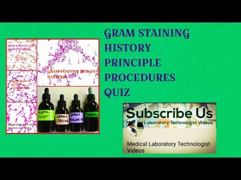 Gram Staining History, Principle, Procedure and Quiz
