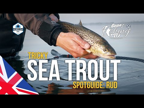 Spotguide: Rud - Tricky Sea Trout // Gone Fishing TV (Updated)