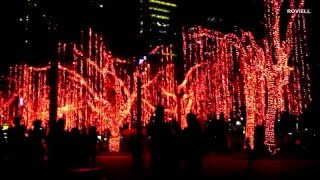 Ayala Triangle Gardens Lights & Sounds Show December 2015