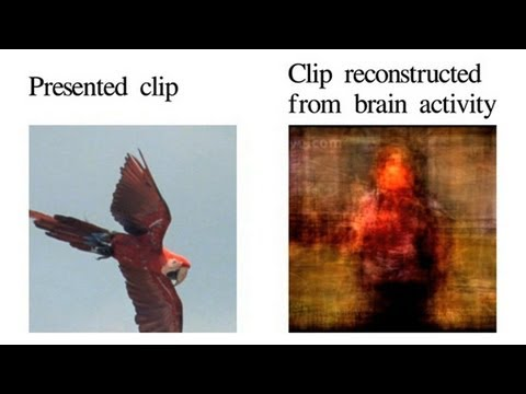 Vision Reconstruction (The Science of Mind Reading) - UCTV Prime Cuts