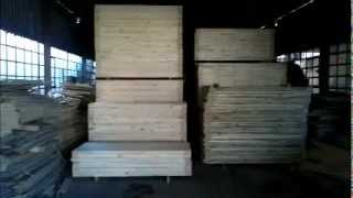 For Sale - Pine Wooden Doors  - Manufacturers And Wholesalers Of Quality Wooden Pine Doors