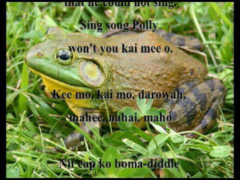 The Bull Frog