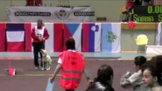 Dog Olympic Games 2010 -  Finale Rally Obedience - Antonio E Sabbia