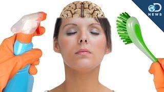 Why Your Brain Needs Sleep