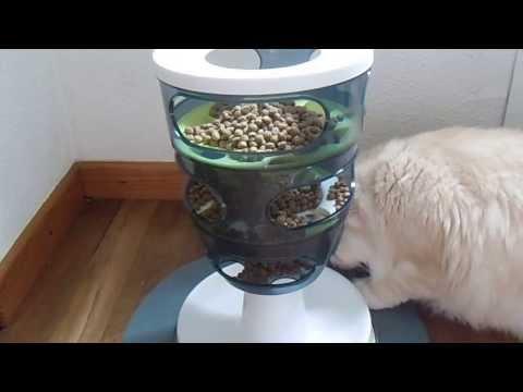 Le Labyrinthe à Aliments Pour Chat Catit Design Senses