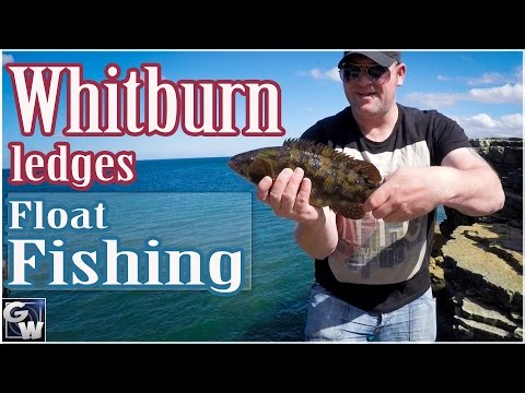 Whitburn Ledges - Rock Fishing.