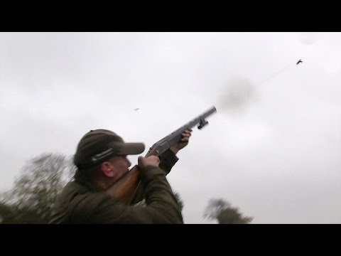 The Shooting Show - rainy driven pheasants in Essex