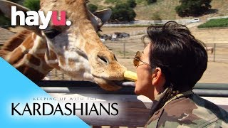 Selfies With Giraffes | Keeping Up With The Kardashians
