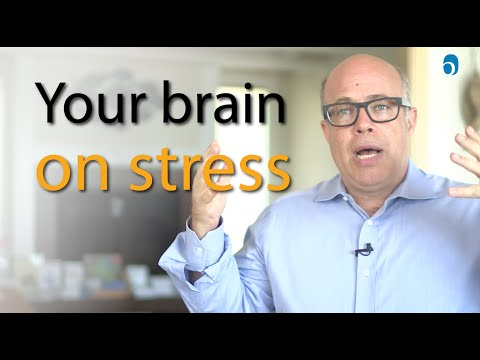 How Your Brain Deals with Rising Stress: Emotional Intelligence Needed!