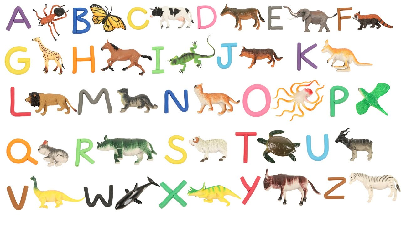 Learn A To Z Alphabets - Photos Alphabet Collections
