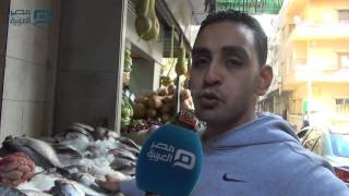 بالفيديو | أسعار الأسماك تلتهم