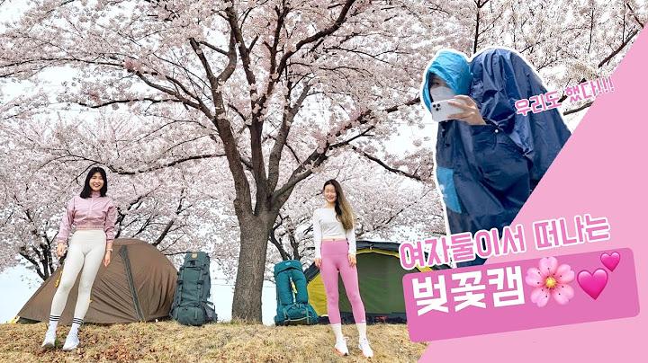 우당탕탕 벚꽃캠  |  여자백패커  | 양양 |  백패킹 | 힐레베르그 | 니모 | 우중캠