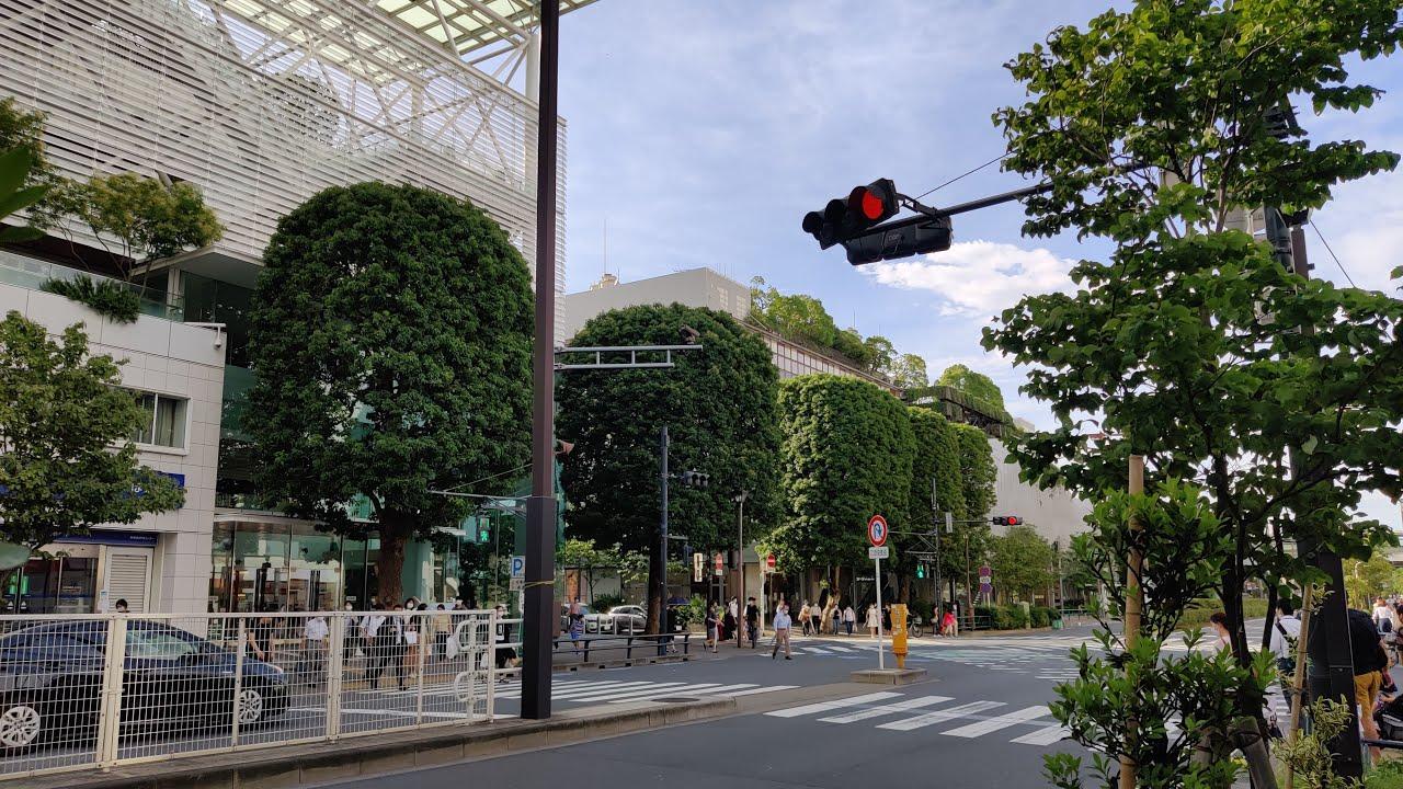 🔴Tokyo Live Walk - Local Streets In Setagaya
