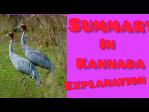 To a pair of Sarus Cranes Story  Summary in kannada (10th class ) SSLC