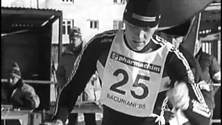 Лыжные гонки, Техника конькового хода