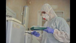Ситуация с коронавирусом в России становится все сложнее