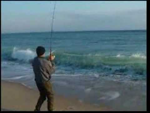 Cape cod surf fishing for striped bass youtube for Surf fishing for stripers
