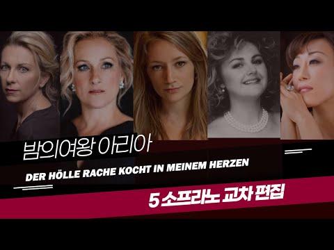 [한글] '교차편집' '밤의 여왕 아리아' Der Hölle Rache Kocht in Meinem Herzen '밤의 여왕 아리아'