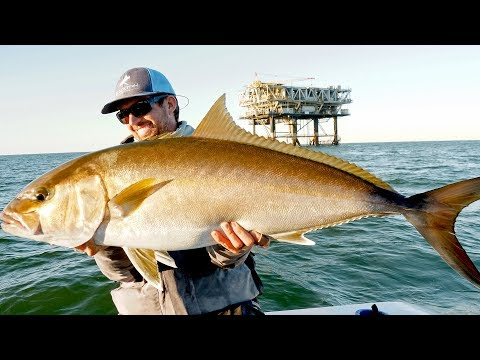 Fishing for Giant Amberjacks and Tuna on Oil Rigs