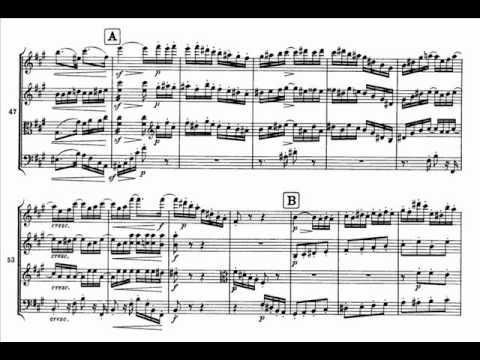 Brahms String Quartet Op. 51 No.2 in A minor [3\4] Quasi Minuetto moderato