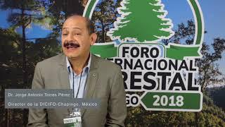 Dr. Jorge Antonio Torres Pérez