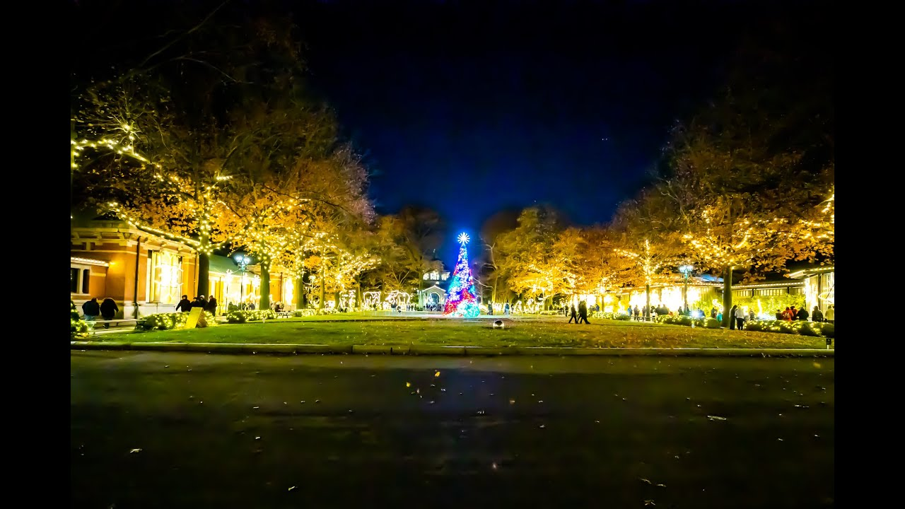 The Bronx Zoo Holiday Lights - Full