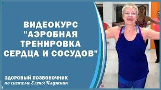 Аэробная тренировка сердца и сосудов - презентация | Елена Плужник