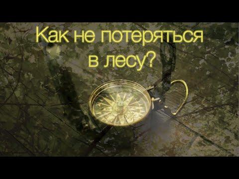 Как не потеряться в лесу / Компас Veber Engineer