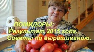 Помидоры: Результат 2015 года. Советы по выращиванию.(В этом видео я подведу итог по томатам в 2015 году: какие сорта сажала, какими довольна, какими нет, а также..., 2015-08-19T15:39:23.000Z)