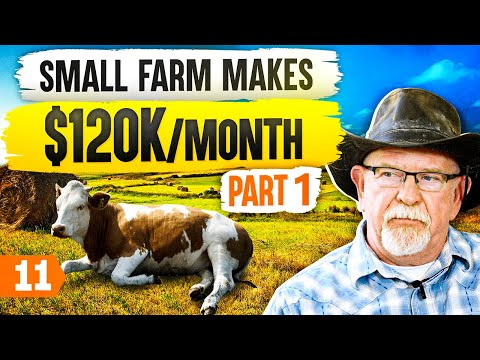DOWNLOAD OR WATCH: How to Start a Farm that Makes $120K/ Month (Pt. 1)