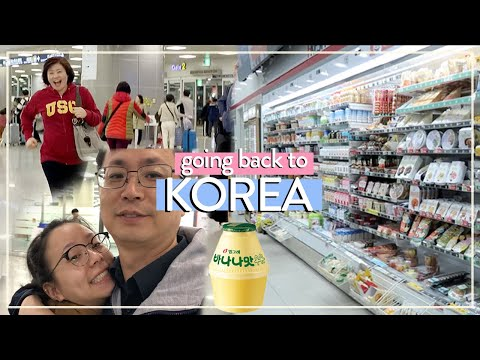 BACK IN KOREA!! (Korean Duck Stir Fry, Busan Cafe Street) | Korea Vlog