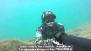 Подводная охота в Чёрном море (август 2015)(, 2016-02-27T11:54:39.000Z)