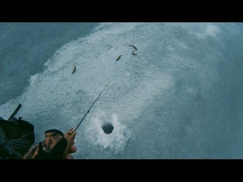 зимняя рыбалка на окуня - 2016-12-24 21:17:28