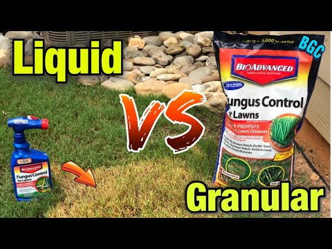 best-fungus-control-for-bermuda-grass-//-bio-advanced-//-dollar-spot-,-brown-patch-quick-fix