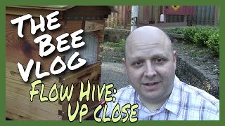 Flow Hive: Up Close - The Bee Vlog - April 18, 2016