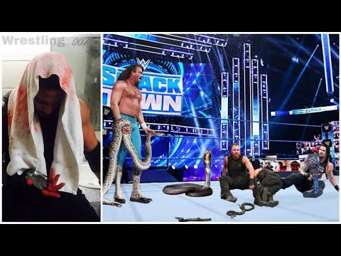 WWE superstars attacked by animals |
