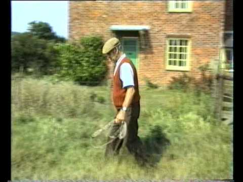 Sheepdog Training With Ted Hope Pt 1