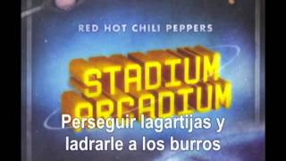 Red Hot Chili Peppers - Death of a Martian (Sub)